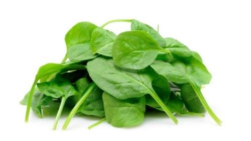 spinach-dementia130912