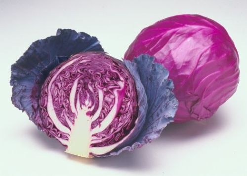 Red%20Cabbage