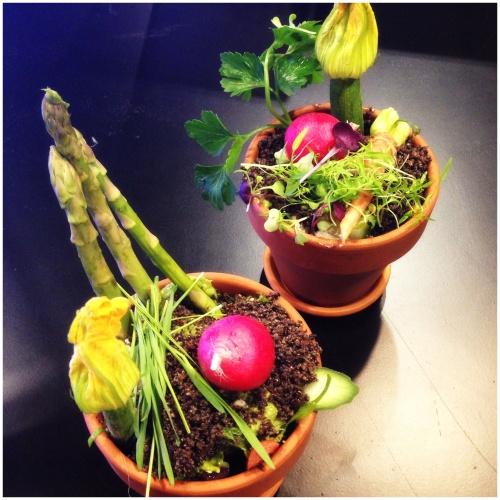Teresa Cutter's 'Flower Pot Salad'
