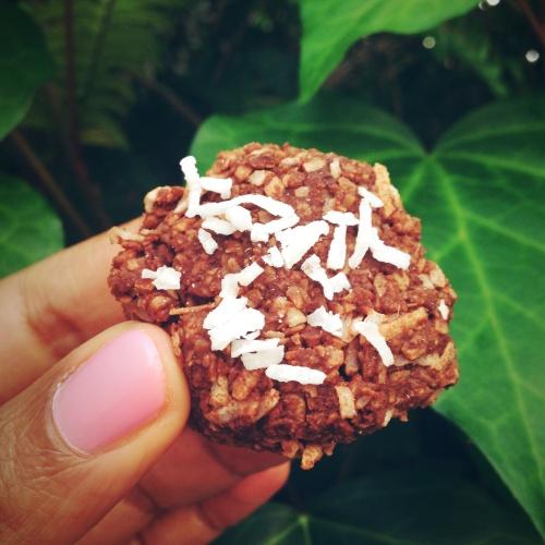 Wellness Temple - Raw Coconut Macaroons
